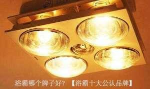 浴霸哪个牌子好?【浴霸十大公认品牌】电机冲片